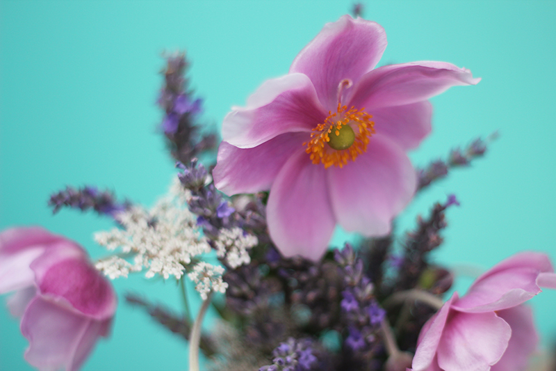 Fleurs - Juliette blog féminin