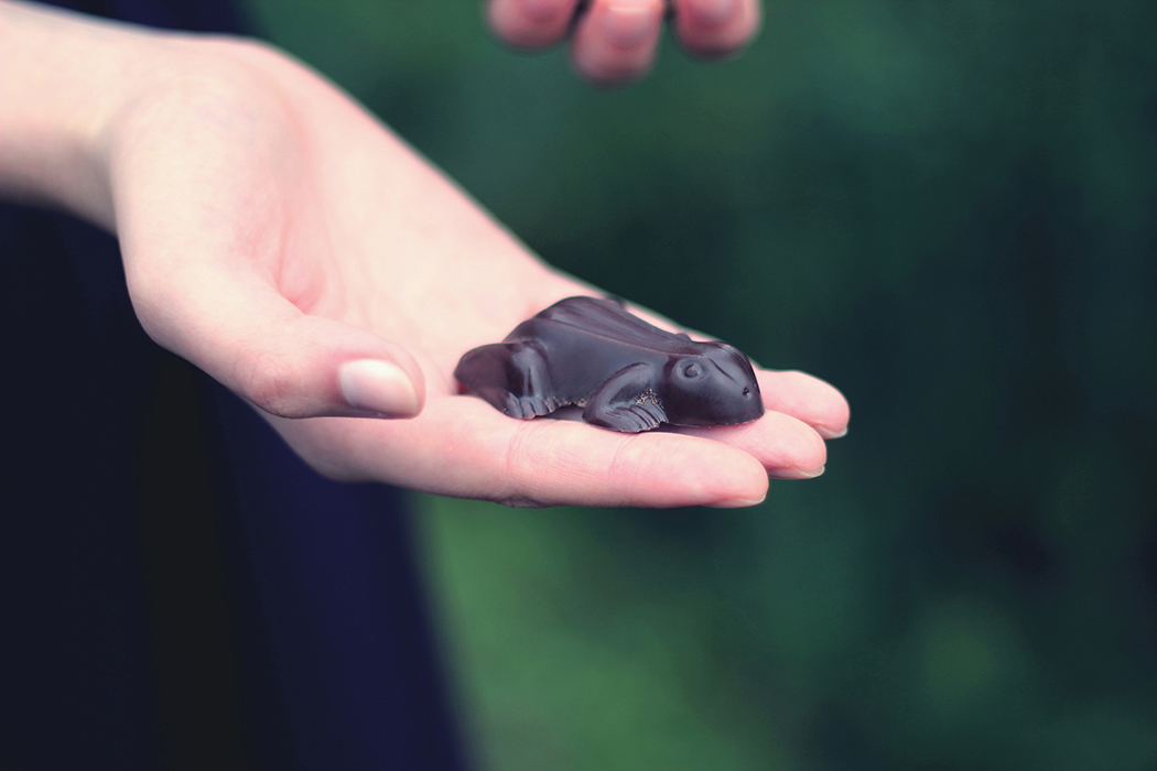 Chocogrenouille - Moule chocolat - Chocolate frog Harry Potter - Juliette Blog féminin