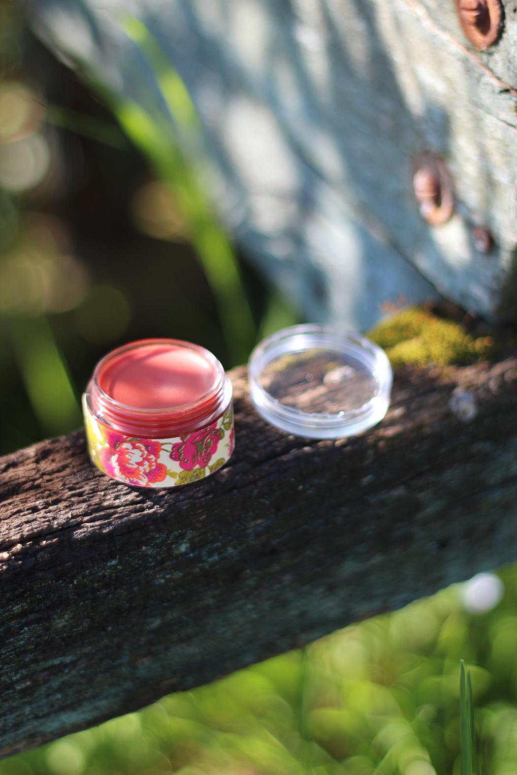 DIY Baume à lèvres teinté - Juliette blog féminin (3)