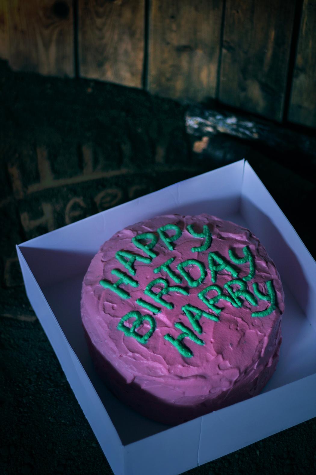 Anniversaire Harry Potter Gateau.A Table Dans Harry Potter 4 Happy Birthday Harry Gateau